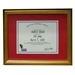Gold Crackle Certificate Display Frame